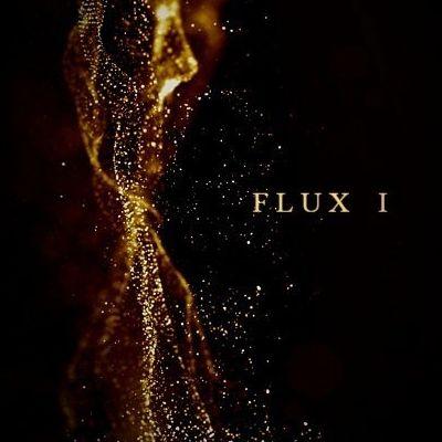 Flux 1
